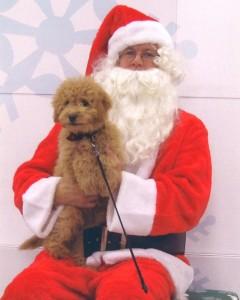 Noah with Santa 2012